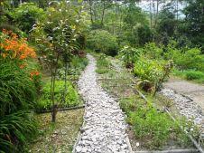 Our permaculture garden//Unser Permakultur Garten